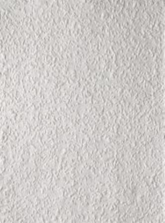 3098 ProjectLarge - Behang Rauhfaser